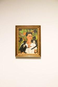 Frida Museum 4